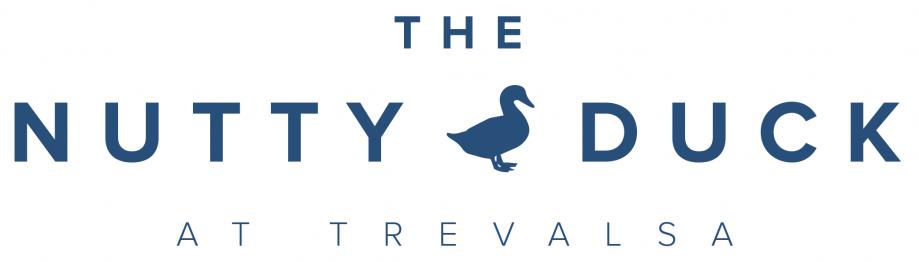 The-Nutty-Duck-Logo-Case-Study-Idenna-Creative