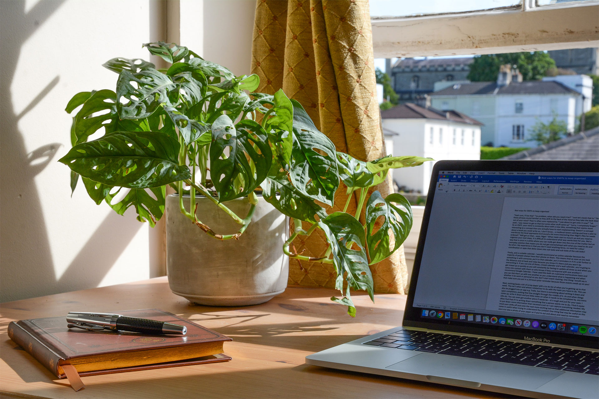 Desk with laptop and plant